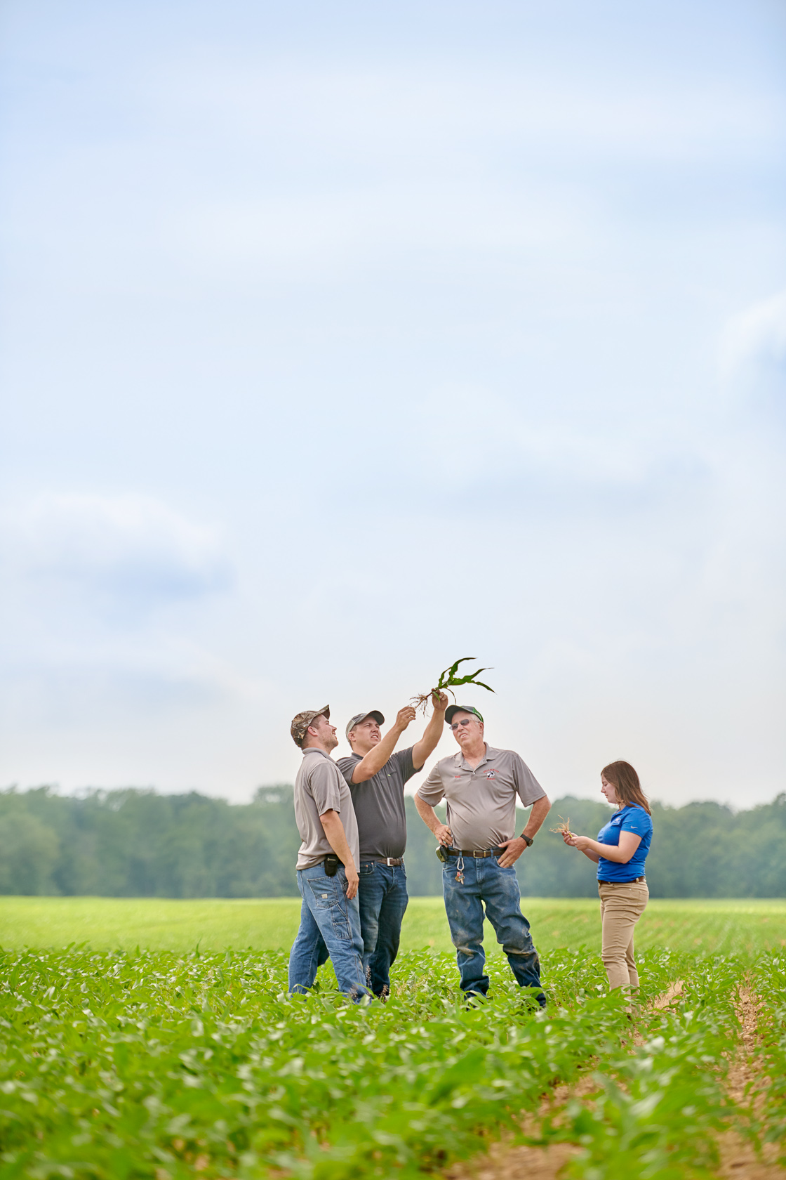 Wellacrest Crop Inspection | Editorial Photographer
